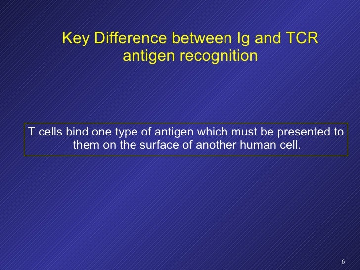 Key Difference between Ig and TCR antigen recognition <ul><li>T cells bind one type of antigen which must be presented to ...