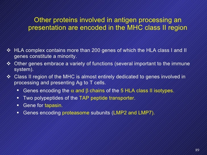 Other proteins involved in antigen processing an presentation are encoded in the MHC class II region <ul><li>HLA complex c...
