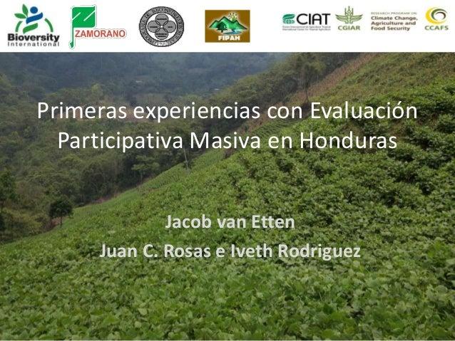 Primeras experiencias con Evaluación Participativa Masiva en Honduras Jacob van Etten Juan C. Rosas e Iveth Rodriguez