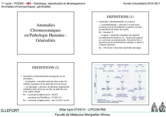 1er cycle – PCEM2 – MI5 – Génétique, reproduction et développement Anomalies chromosomiques : généralités Année Universita...