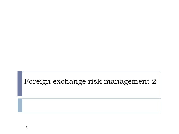 Foreign exchange risk management 21
