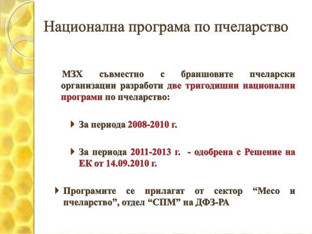 Pcheli Slide 3