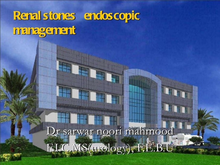 Renal stones  endoscopic  management         Dr sarwar noori mahmood F.I.C.MS(urology), F.E.B.U