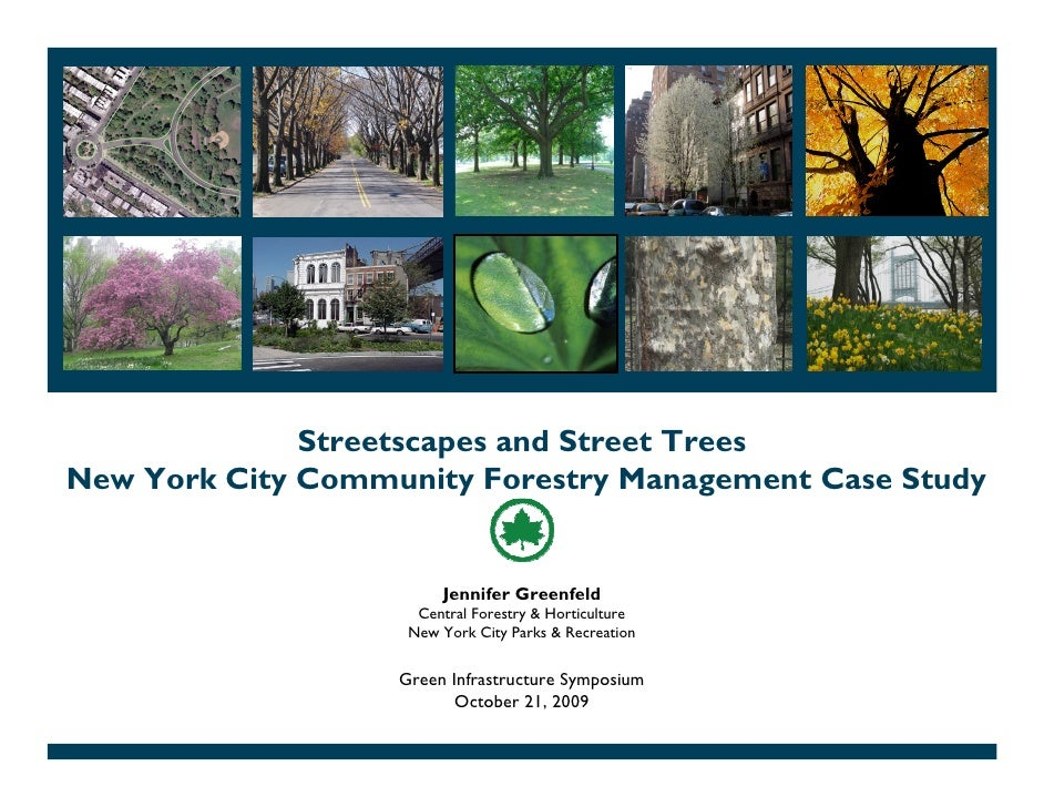 Streetscapes and Street Trees New York City Community Forestry Management Case Study                           Jennifer Gr...