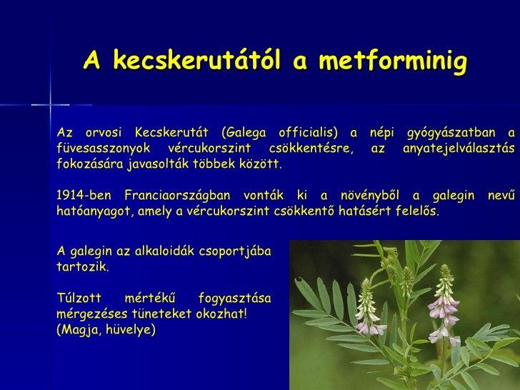 Pcos inzulinrezisztencia 2009_dr_breyer_helga