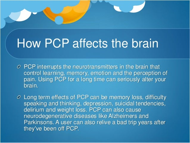 the effects of pcp on the human body