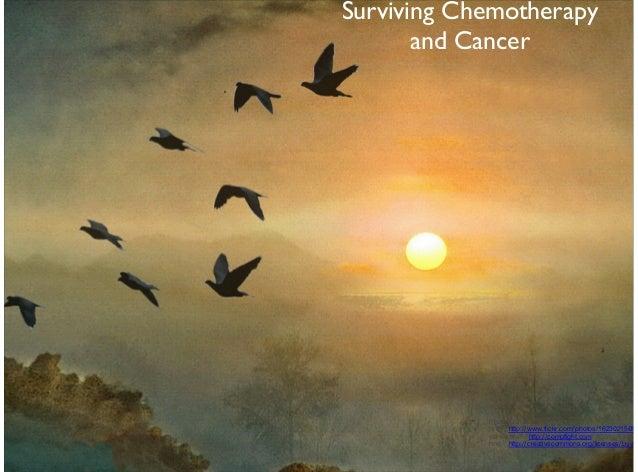"TextSurviving CancerandChemotherapySurviving Chemotherapyand CancerPhoto Credit: <ahref=""http://www.flickr.com/photos/1623..."