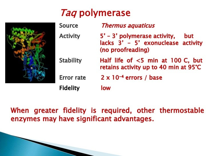 Enzyme    Source             Optimum      Fidelity    Proofreading                             temp. CrTth      T. thermop...
