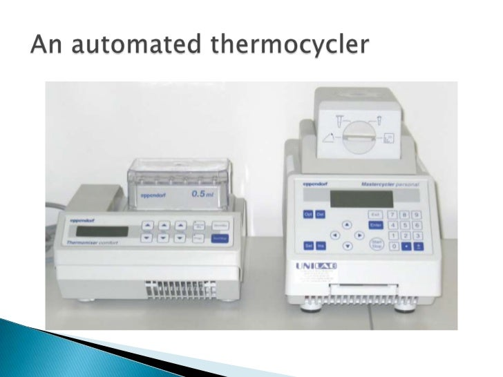 Annealing temperature of primers   Primers have a calculated annealing temperature (e.g. 54°C).   Temperature must be co...