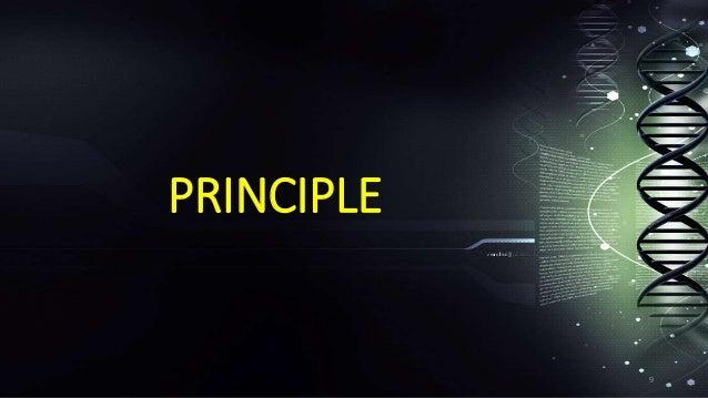 hot start pcr principle pdf