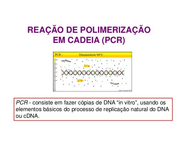 """REAÇÃO DE POLIMERIZAÇÃO EM CADEIA (PCR) PCR - consiste em fazer cópias de DNA """"in vitro"""", usando os elementos básicos do p..."""