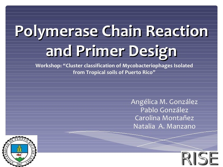 "Polymerase Chain Reaction    and Primer Design  Workshop: ""Cluster classification of Mycobacteriophages Isolated          ..."