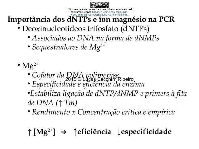 Thermus aquaticus DNA polimerase termorresistente • Antigamente: adição de enzima a cada novo ciclo • Taq DNA Polimerase •...