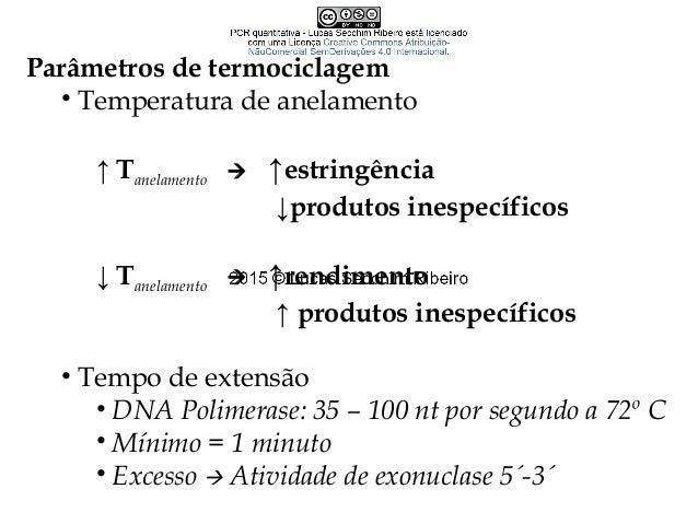 Visualização dos resultados • Separação por eletroforese • Corantes/marcação fluorescente