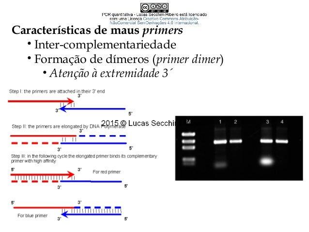 PCR quantitativa • Nomenclatura • qPCR • qRT-PCR • Real-time PCR
