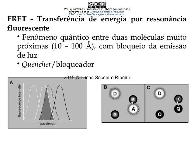 Conceitos importantes • Eficiência 2n = cópias em n ciclos Eficiência teórica= 100%