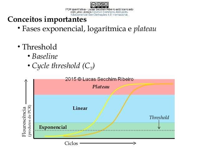 Conceitos importantes • Curva-padrão e blank sample • Gene de referência/constitutivo/normalizador • Gene de interesse Con...
