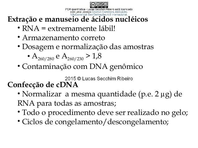 Lucas Secchim Ribeiro secchimribeiro@gmail.com Dpto. Microbiologia Laboratório de Interação Microrganismo-Hospedeiro Sala ...