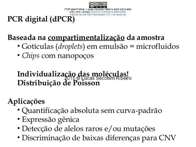 PCR Quantitativa - Lucas Secchim Ribeiro (PGMicro UFMG 2015-1)