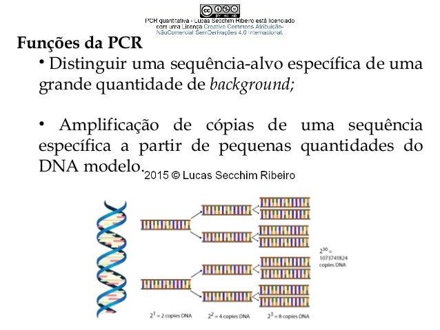 """PCR """"convencional"""" Reagentes básicos Iniciadores senso/antissenso (primers forward/reverse) Cátions (Na+ /K+ e Mg2+ ) DNA ..."""