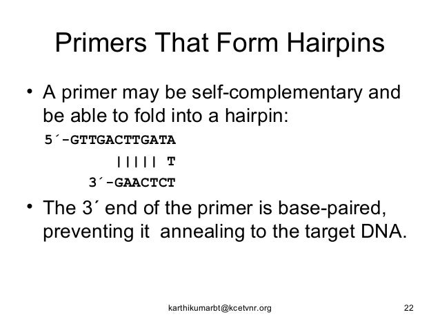pcr how to avoid primer complimentarity to other regions