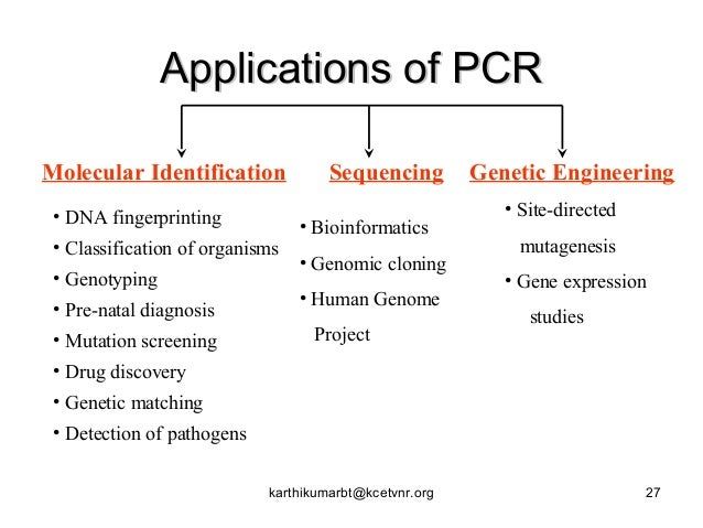 types of pcr