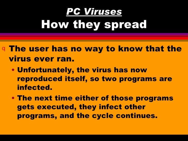 Pc viruses