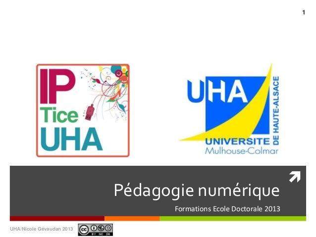 Pédagogie numériqueFormations Ecole Doctorale 2013UHA/Nicole Gévaudan 20131