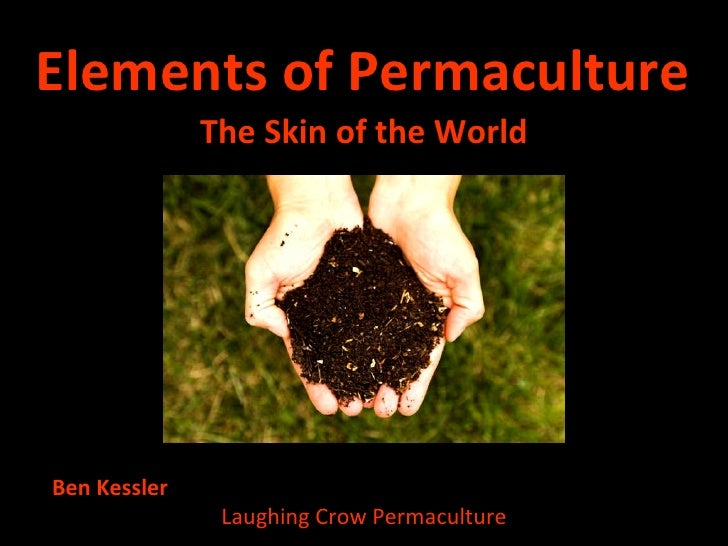 Elements of Permaculture <ul><li>The Skin of the World </li></ul>Ben Kessler  Laughing Crow Permaculture