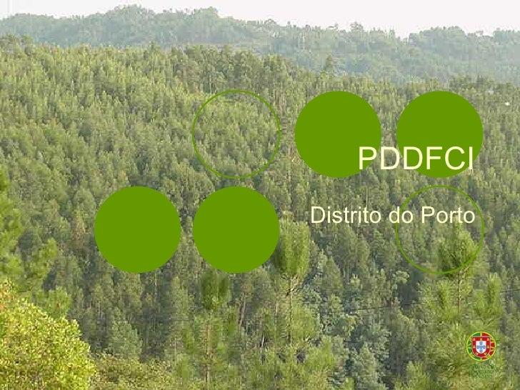 PDDFCI Distrito do Porto
