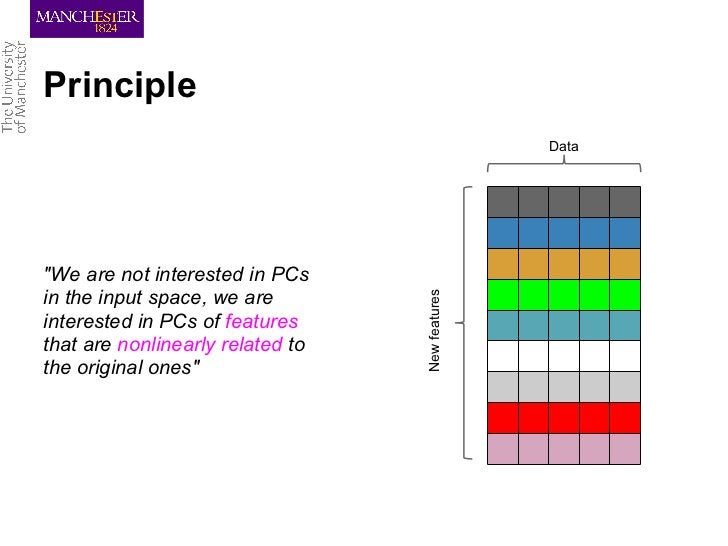 """Principle                                                 Data""""We are not interested in PCs                               ..."""