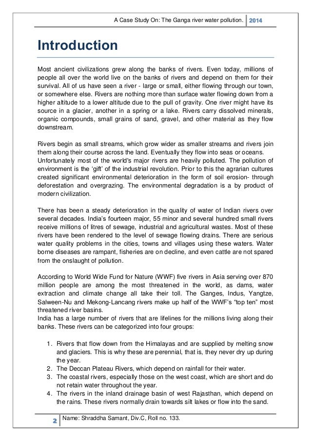 Air and Water Pollution in North America Essay Sample