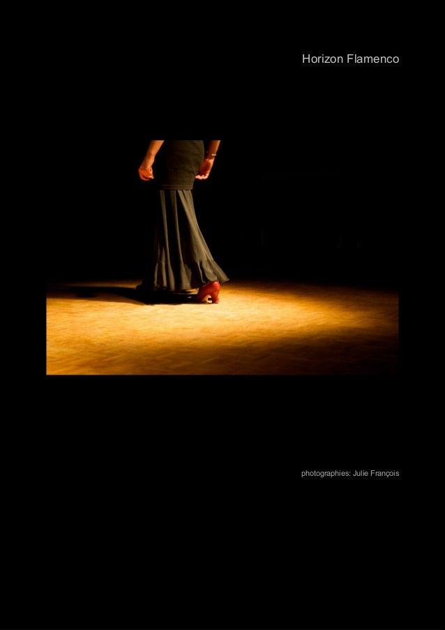 spectacle_06_2009_26.jpg  Horizon Flamenco  photographies: Julie François