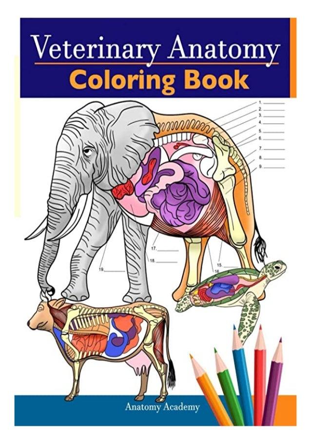 PDF] Veterinary Anatomy Coloring Book Animals Physiology Self-Quiz C…