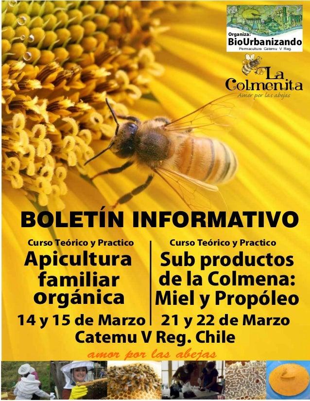 Apicultura familiar rgánicao 14 y 15 de Marzo Catemu V Reg. Chile amor por las abejas BioUrbanizando Organiza: La Amor por...