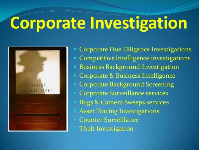 Single fraud investigation service december 2013