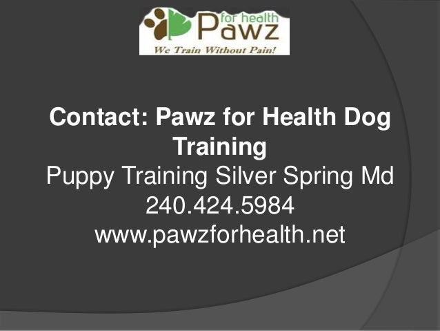 Get the Service of Rescue Dog Training Maryland Slide 3