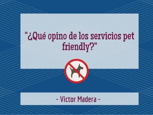 """""""Victor Madera: ¿Qué opino de los servicios pet friendly?"""""""
