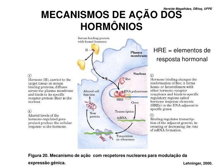 Nereide Magalhães, DBioq, UFPE       MECANISMOS DE AÇÃO DOS            HORMÔNIOS                                          ...