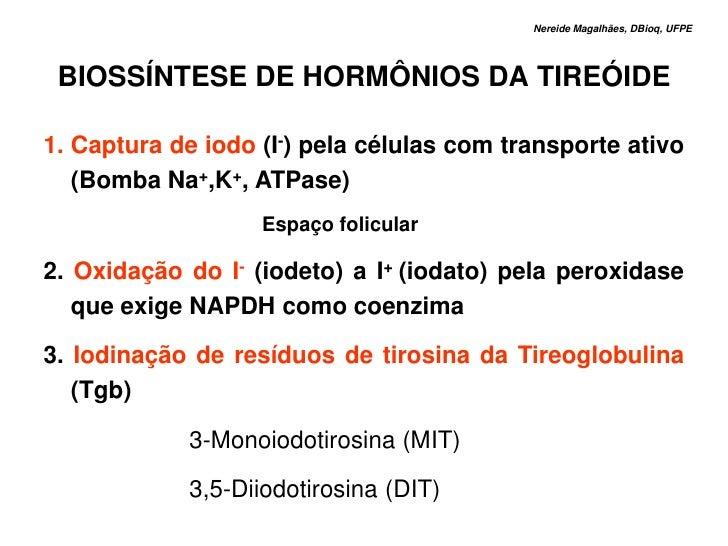 Nereide Magalhães, DBioq, UFPE      BIOSSÍNTESE DE HORMÔNIOS DA TIREÓIDE  1. Captura de iodo (I-) pela células com transpo...