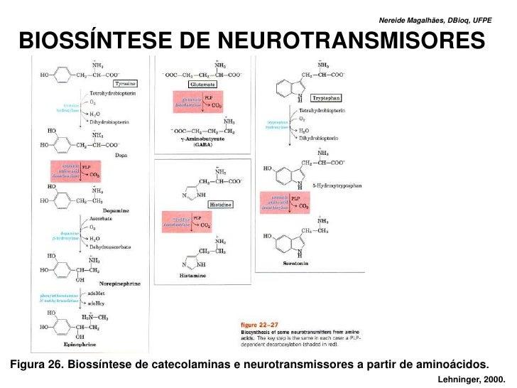 Nereide Magalhães, DBioq, UFPE    BIOSSÍNTESE DE NEUROTRANSMISORES     Figura 26. Biossíntese de catecolaminas e neurotran...