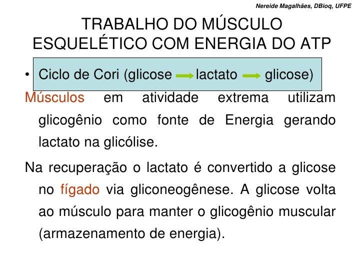 Nereide Magalhães, DBioq, UFPE        TRABALHO DO MÚSCULO  ESQUELÉTICO COM ENERGIA DO ATP • Ciclo de Cori (glicose    lact...