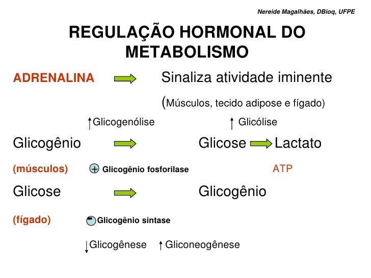 Nereide Magalhães, DBioq, UFPE                REGULAÇÃO HORMONAL DO                   METABOLISMO ADRENALINA              ...