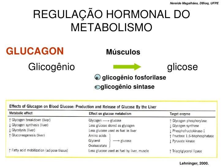 Nereide Magalhães, DBioq, UFPE       REGULAÇÃO HORMONAL DO         METABOLISMO  GLUCAGON           Músculos     Glicogênio...