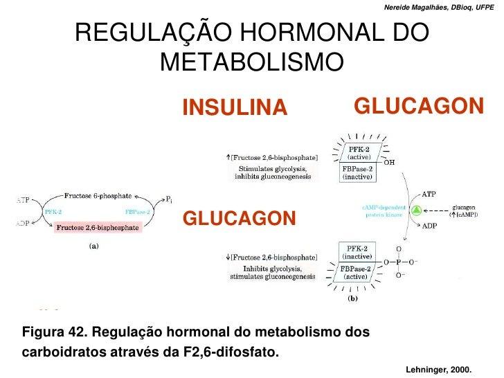 Nereide Magalhães, DBioq, UFPE           REGULAÇÃO HORMONAL DO             METABOLISMO                       INSULINA     ...