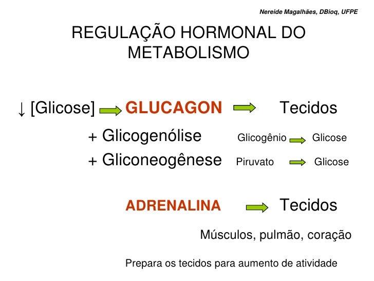 Nereide Magalhães, DBioq, UFPE          REGULAÇÃO HORMONAL DO             METABOLISMO   ↓ [Glicose]   GLUCAGON            ...