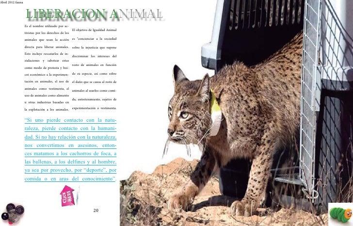 Abril 2012 fauna                                                                        Abril 2012 fauna                  ...