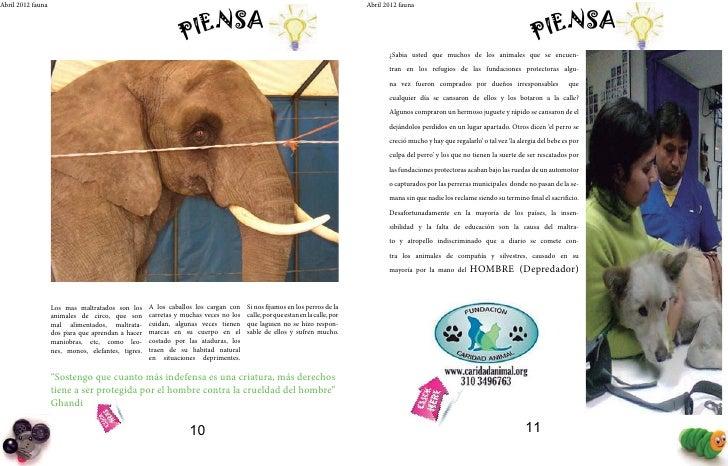 Abril 2012 fauna                                                                                                          ...