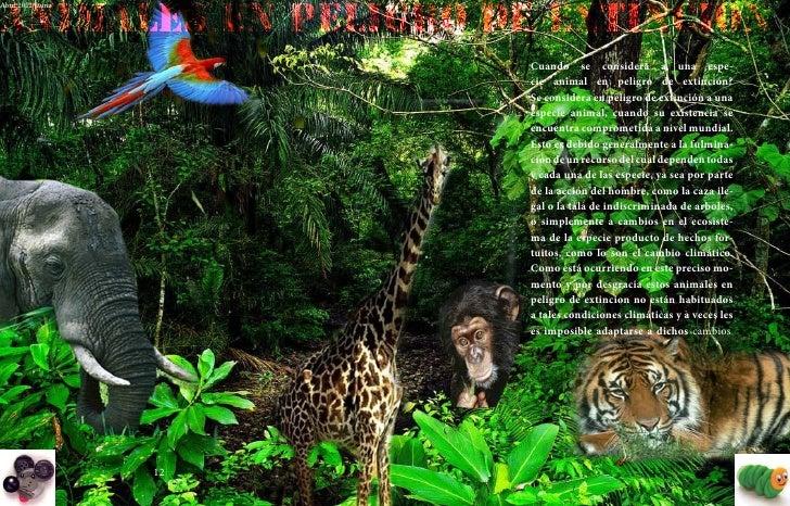 ANIMALES en PELIGRO DE EXTINCIONAbril 2012 fauna             Abril 2012 fauna                                             ...