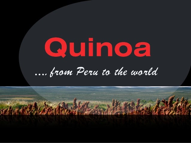 Quinoa is a grain native to the Peruvian Andes whose use dates back to the heyday  Inca  The greatest wealth of Andean peo...